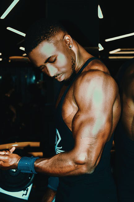 Bulking or Definition? What should you go for?
